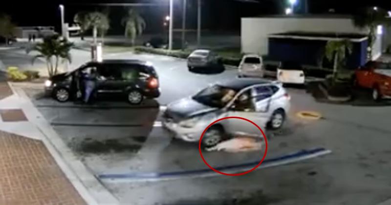 Roba su bolsa a una anciana y luego la atropella en Florida