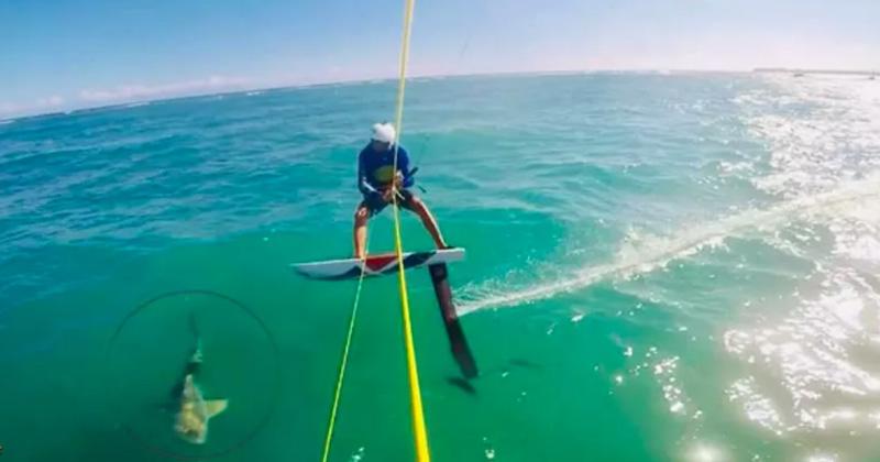 Un tiburón hace tropezar a un kitesurfista que sufre una aparatosa caída